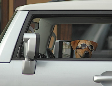 Hey Dude, where's the keys?