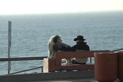Man & his best friend.