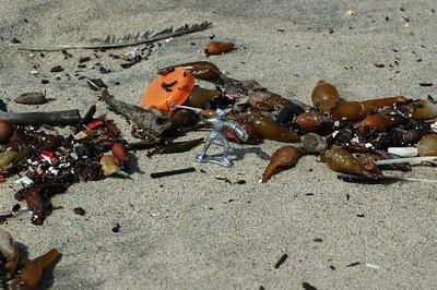 Fighting Beach Trash