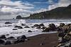 redwoods-coast-4093