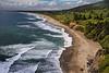 redwoods-crescent beach-4266