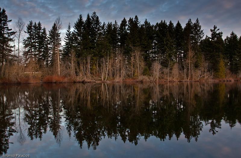 Yellow Lake, Issaquah, WA