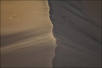 Kelso Sand Dunes at Sunset in Mojave
