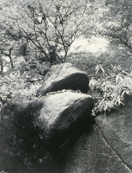 Gama Ishi - Frog Rock
