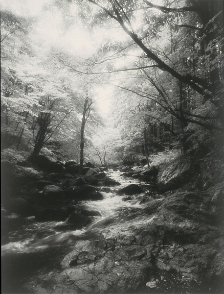 Nikko Stream below Choshi Falls