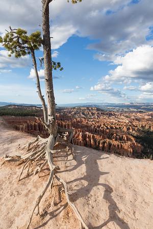 Bryce Canyon May 2016
