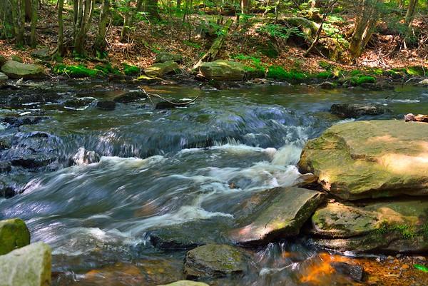 Ricketts Glen State Park, PA