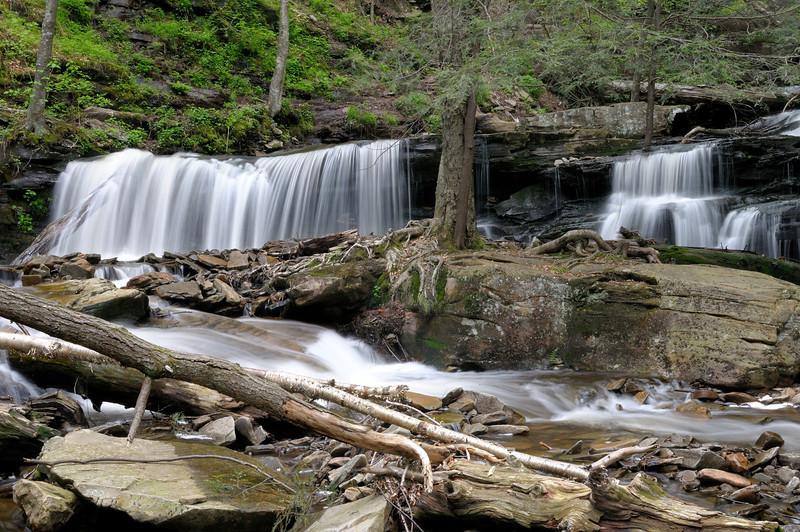 Cayuga Falls (11 ft)