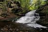 Onondaga Falls (15 ft)
