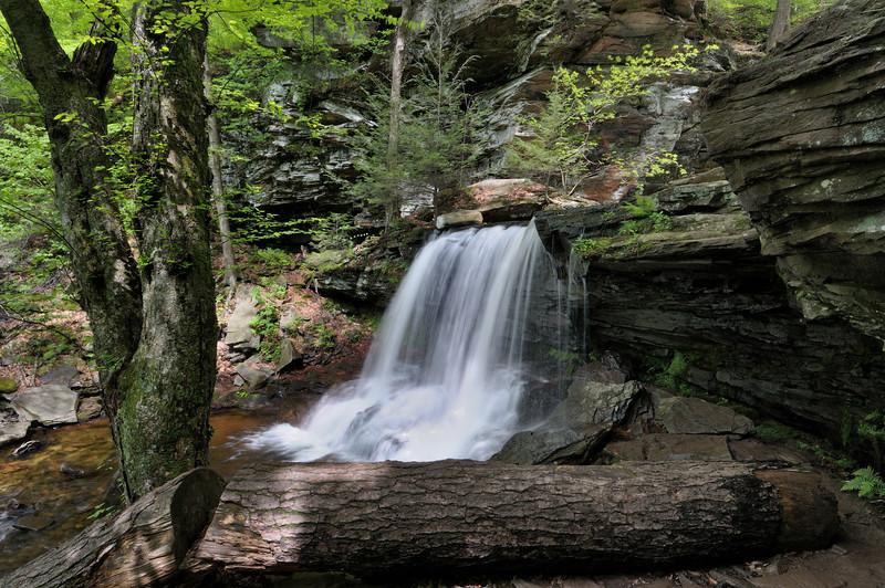 B. Reynolds Falls (40 ft) A