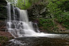 Sheldon Reynolds Falls (36 ft)