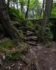 Stairway to Adams Falls