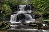 Tuscarora Falls (47 ft)