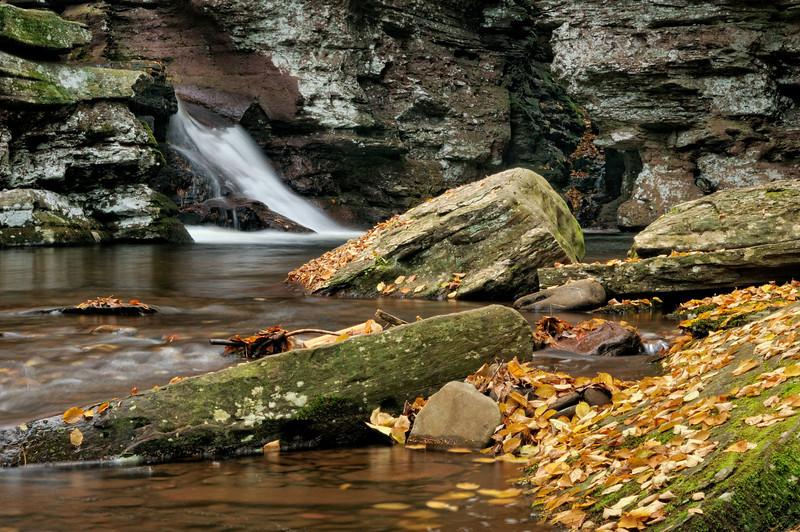 Adams Falls (4)