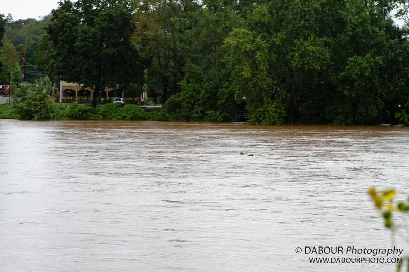 Flooding near the Riegelsville bridge