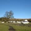 Bowlees in Teesdale
