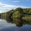 Lockdown II River Wear walk