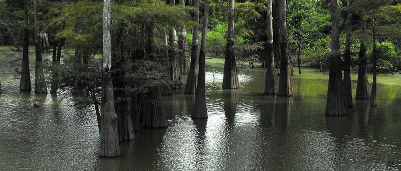 Jackson Bayou, Arkansas