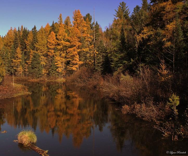 Bearskin Creek, Wisconsin
