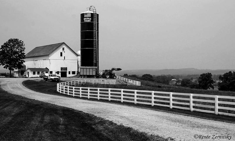 Bellvale Dairy Farm in Warwick NY