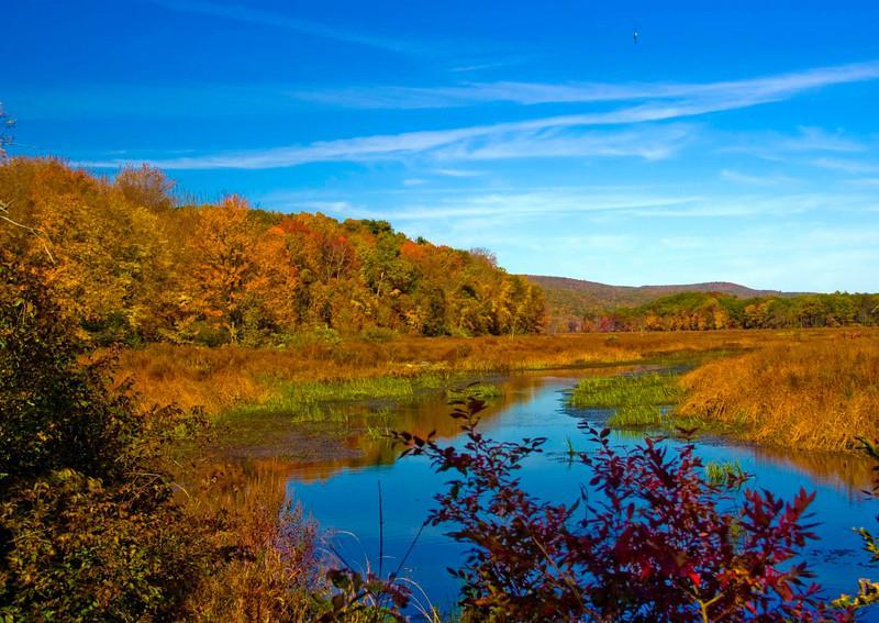 Autumn Landscapes on the Preserve
