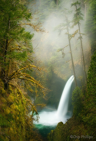 """Metlako Mist""  Columbia Gorge, Oregon"