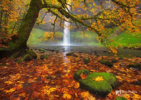 """Silver Falls Autumn."""