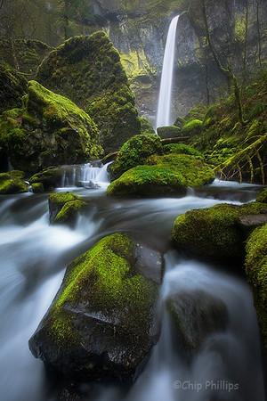 """""""Vertical Mossy Elowah""""  Elowah Falls, Columbia Gorge, Oregon"""