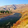 Sumac colors the hillside of the Grande Ronde in fall