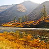 Fall colors come to the Grande Ronde River