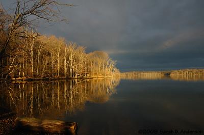 Trees reflecting sunrise Pohick Bay Fairfax County, Virginia February 2009