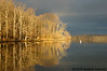 Trees reflecting sunrise<br /> Pohick Bay<br /> Fairfax County, Virginia<br /> February 2009
