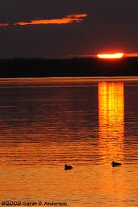 Sunrise, Pohick Bay Fairfax County, Virginia February 2009