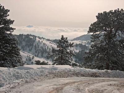 Snow 2009 03 (40)