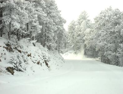 Snow 2009 01 (3)