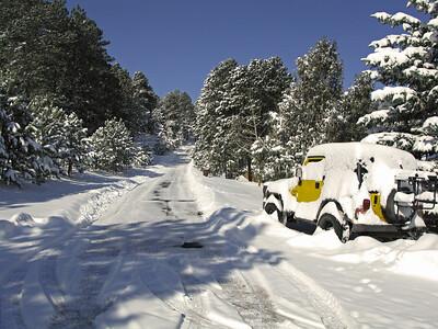 Snow 2009 03 (28)