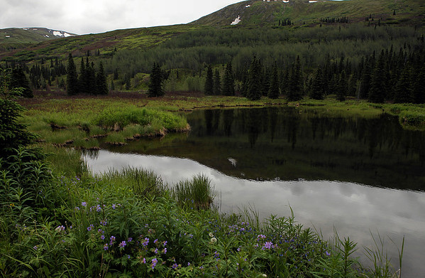 Road Trip - Hatcher Pass 7-6-11