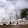 305  G Grand Geyser Erupting