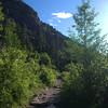 1815  G Sunny Trail V