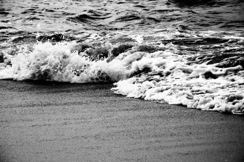 Surf_bw