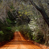 Old Centerville Road, Leon County, Florida.