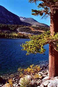 Thursday afternoon at Rock Creek Lake, CA.