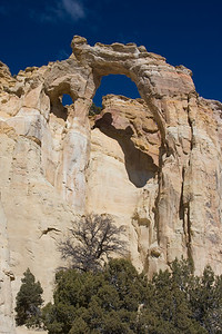 Grosvenor Natural Arch