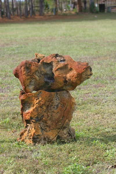 Vertical shot of natural limestone rock showing iron deposits looks like a dog standing in a yard.