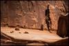 Emperor - Cast in Stone, Arches Natinalpark Utah