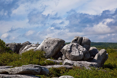 Dolly Sods, WV (IMG_)1507)