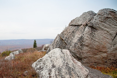 Dolly Sods, WV (IMG_0580)