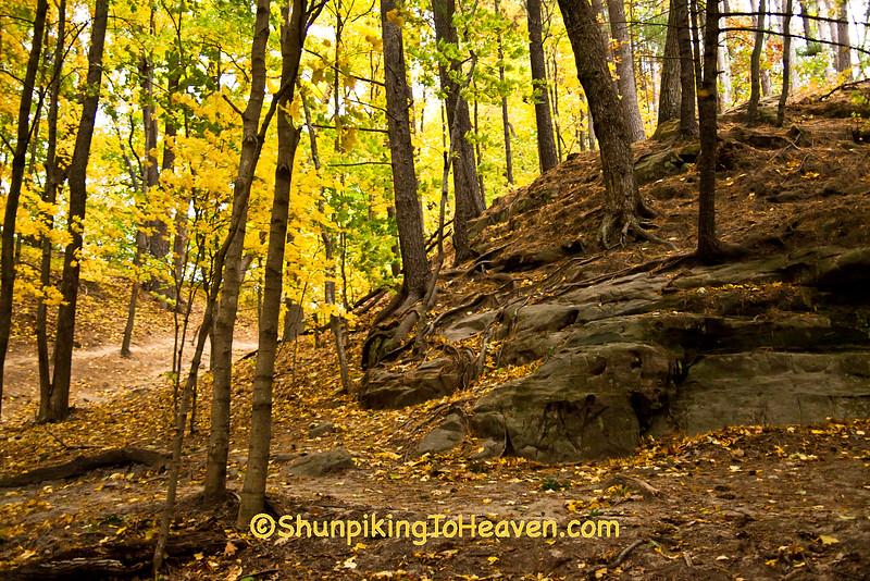 Rocky Terrain at Pewit's Nest, Sauk County, Wisconsin