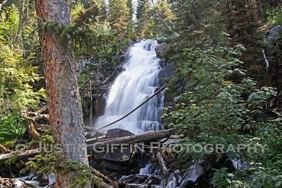Fern Falls 2