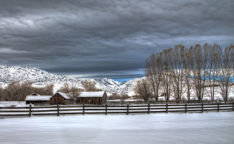 Early morning winter, Littleton, Colorado